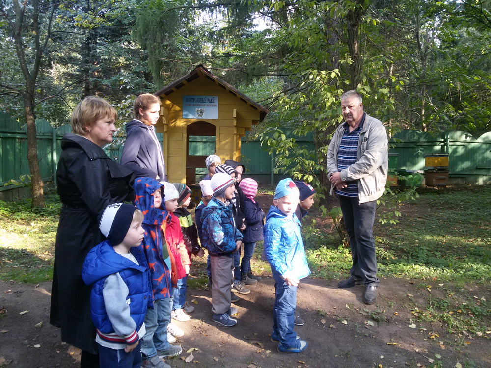 Детский сад на экскурсии в Музее мёда