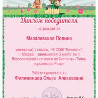 мазалевская2м.
